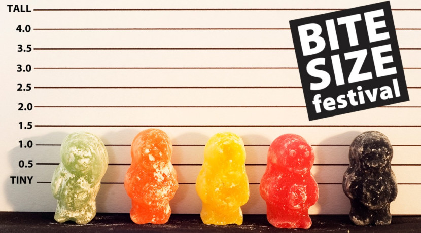 Bite Size Festival returns to Warwick Arts Centre