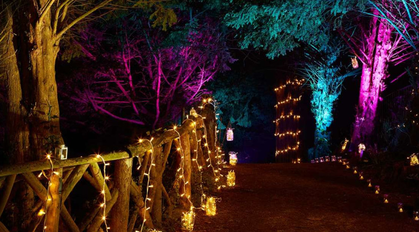 Discover Enchanted Kenilworth Castle this Christmas