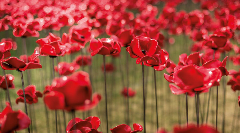 Weeping Window comes to Middleport Pottery