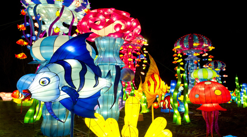 Christmas favourite Magical Lantern Festival returns