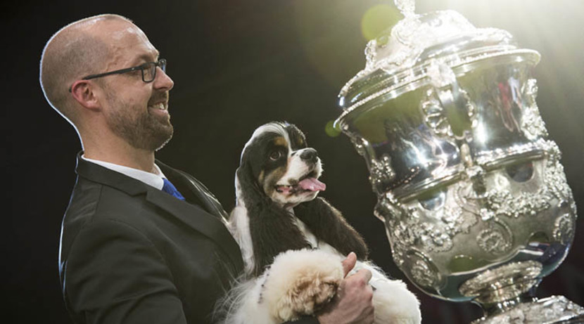 Tickets to Crufts 2018