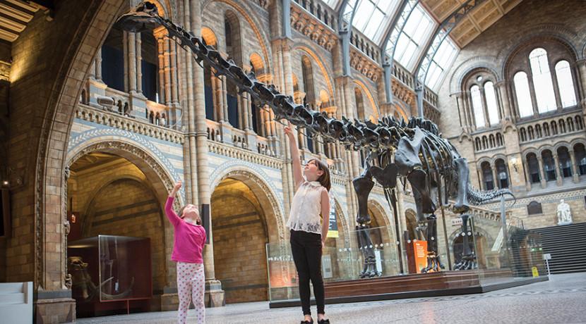 Dippy the Diplodocus heads to Birmingham Museum & Art Gallery