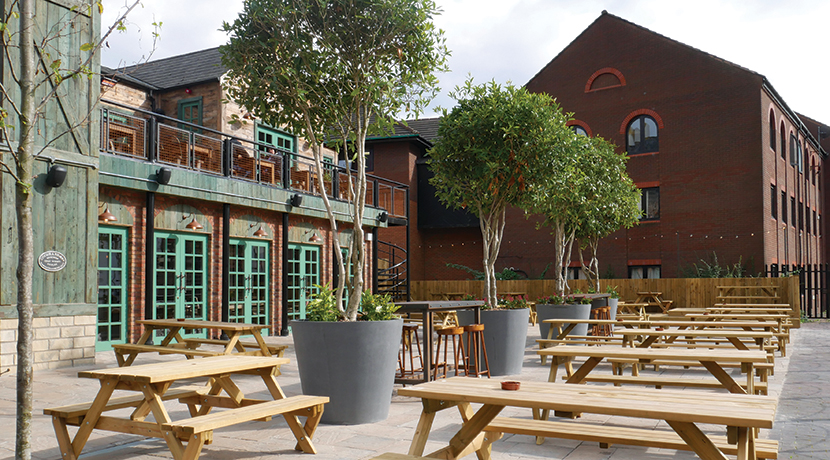 The Canal House Review