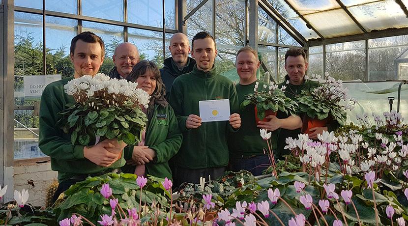 Birmingham Botanical Gardens win big at RHS Show