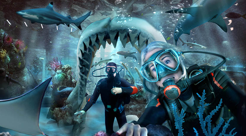 Swim with sharks at the new Bear Grylls Adventure attraction
