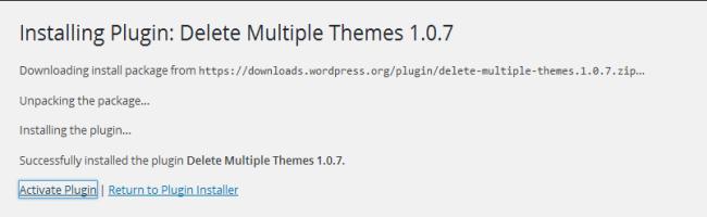 Activate Delete Multiple Themes Plugin