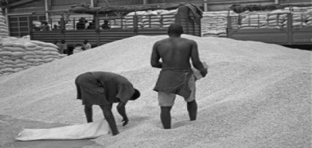 maize milling in kisenyi kampala