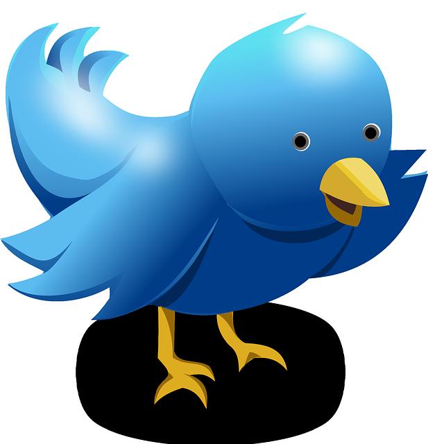How To Mass UN-Follow Twitter Non-Followers Instantly