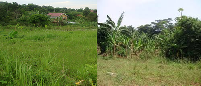 Land measurement in Uganda