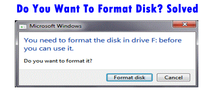 Do You Want To Format Disk