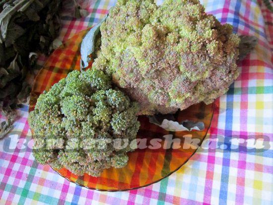 Брокколи рецепт маринования