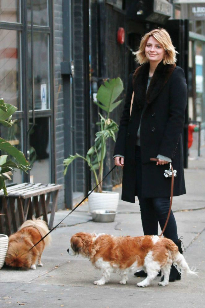 What kind of dog does mischa barton have