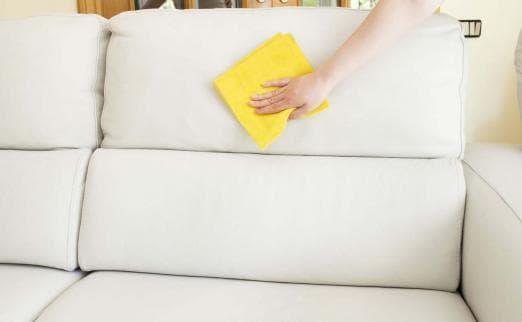 Бизнес план химчистка мягкой мебели и ковров на дому