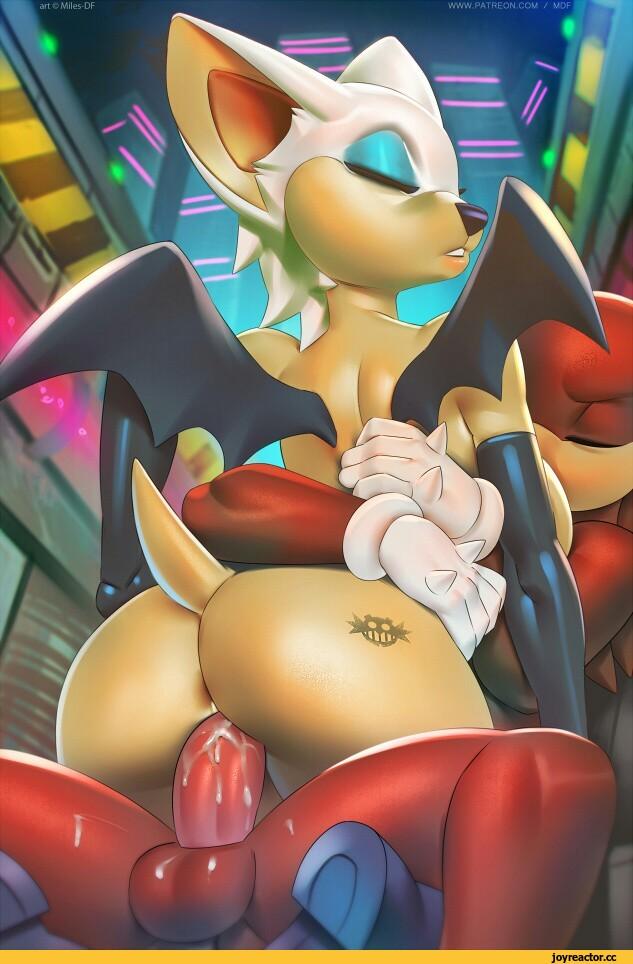 Rouge the bat,StH Персонажи,Sonic,соник, Sonic the hedgehog, ,фэндомы,Sonic porn,r34,тематическое порно/thematic porn,секретные разделы,скрытые разделы joyreactor,Miles-DF,artist,Knuckles The Echidna