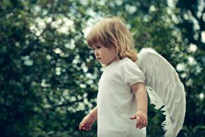 Фотографии Ангелы Девочки Крылья Дети
