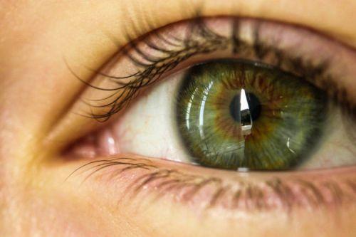 Большие каре зеленые глаза