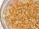 Рецепты из пророщенной пшеницы