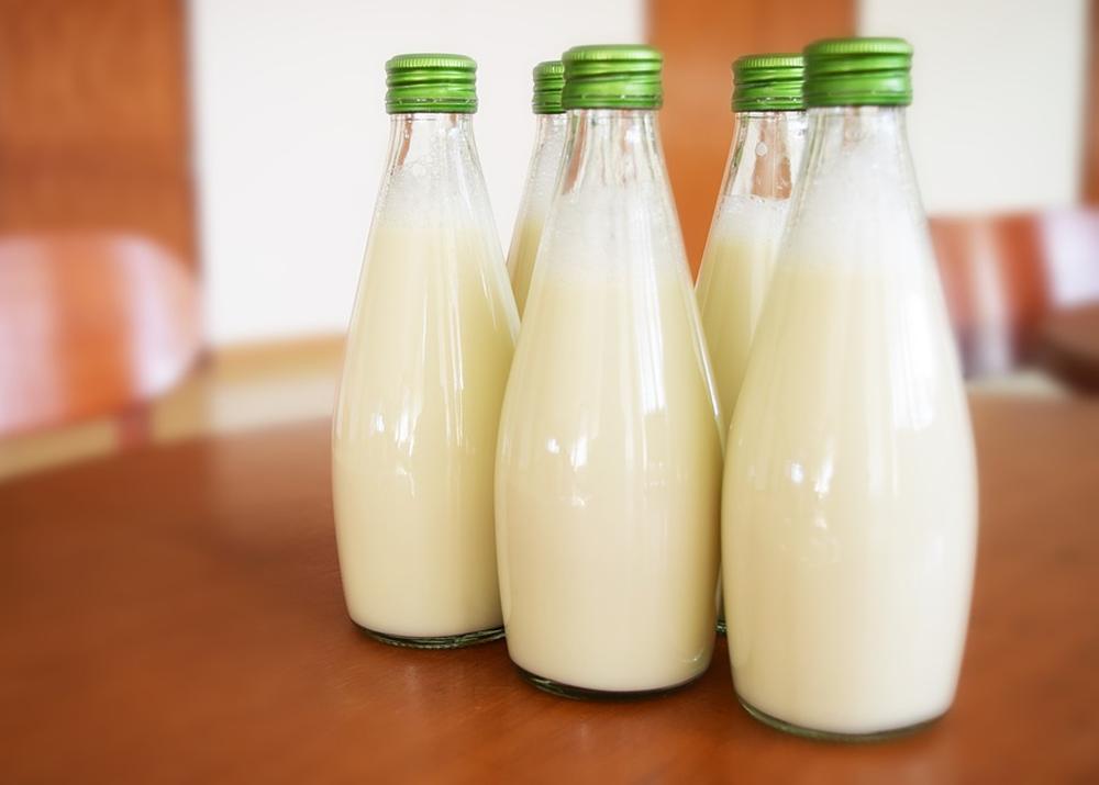 Производство козьего молока как бизнес
