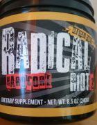 radicalriot2