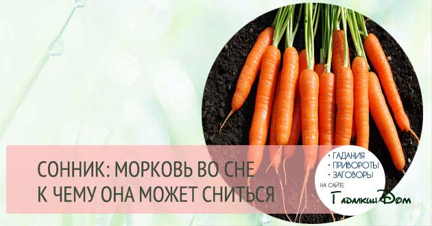 Сонник вареная морковь