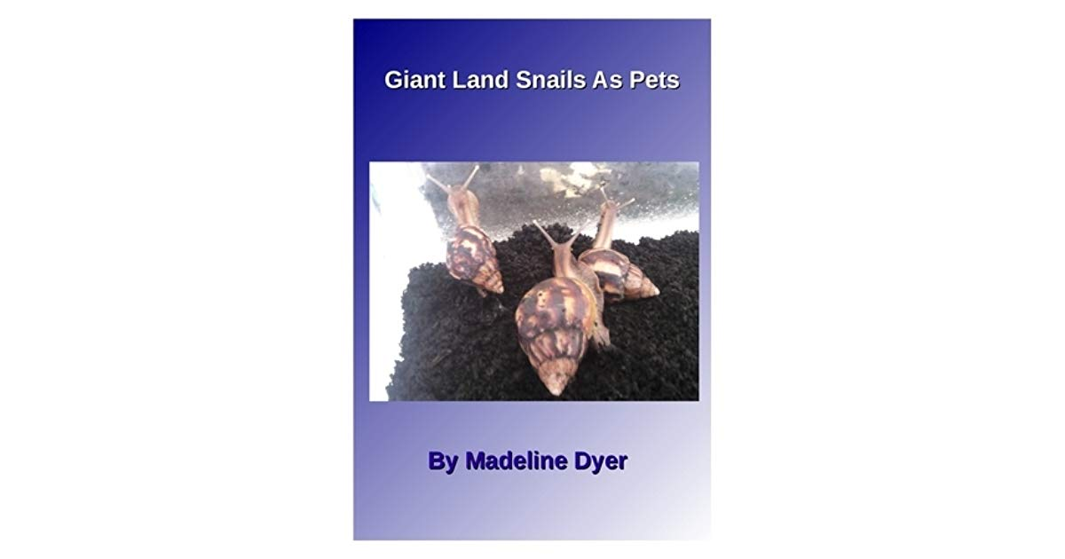 Giant land snails as pets