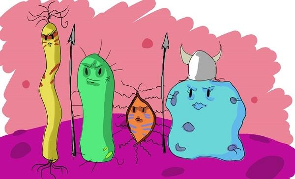 Antibiotic resistance Singapore