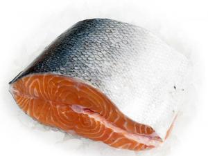 Рыба семга и ее полезные свойства