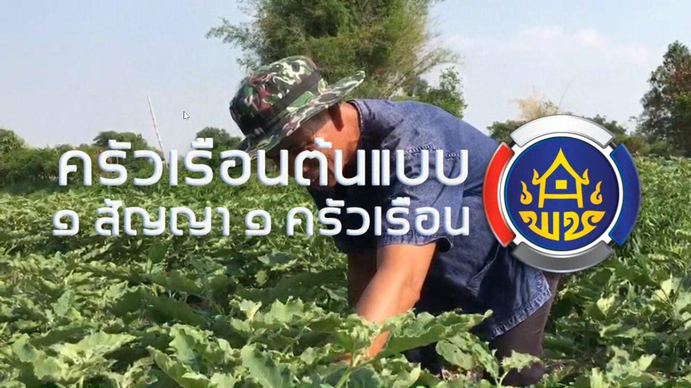(คลิป) นายสเถียร มาสนา อาชีพเกษตรกร ครัวเรือนต้นแบบ 1 ครัวเรือน 1 สัญญา