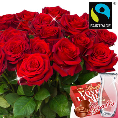 FAIRTRADE Roses red in the bunch with vase & Lindt Lindor