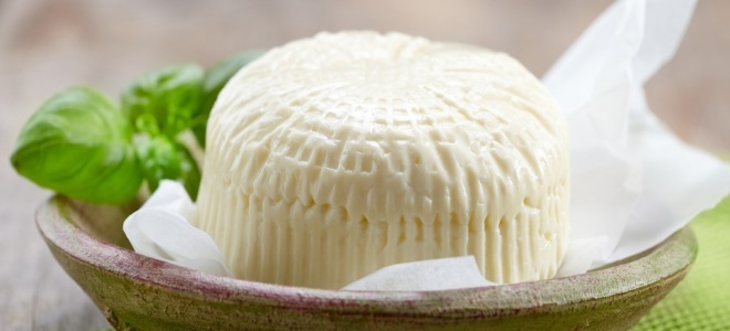 Твердый сыр в домашних условиях из молока