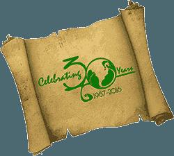 Dragon Con 30th Anniversary