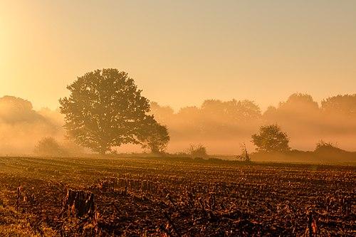 Рассвет в деревне Бёрнсте в окрестностях Дюльмена, Северный Рейн-Вестфалия
