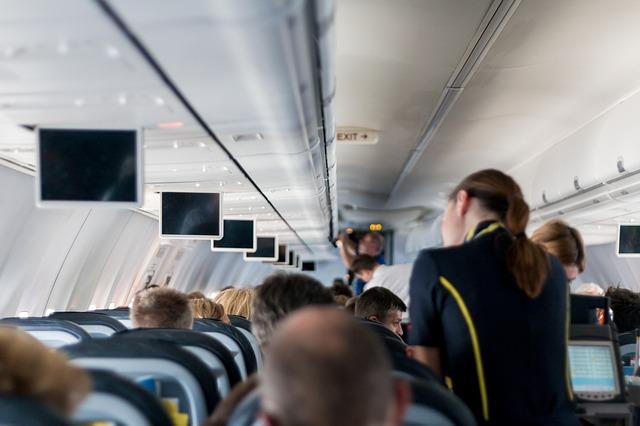Где учатся на стюардессу в украине