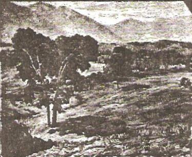 The Pasture Lands