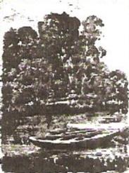 Row Boats at Moret