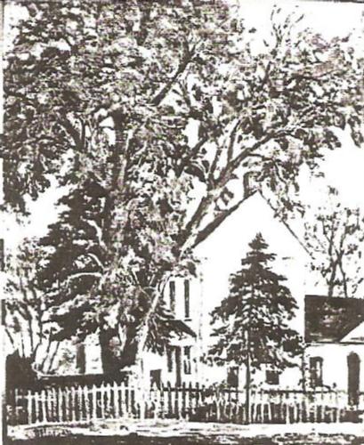 A Springville Home