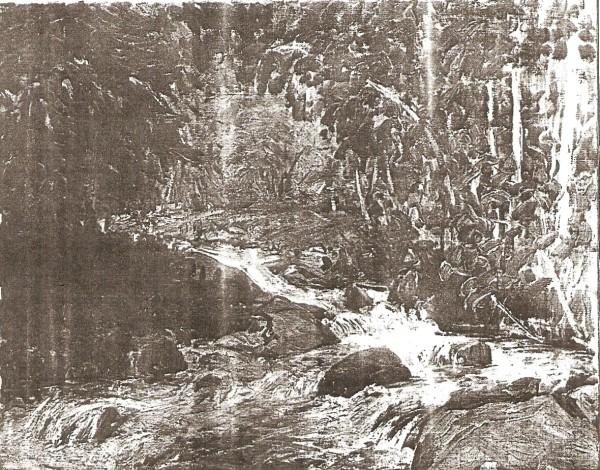 Timpanogos Creek