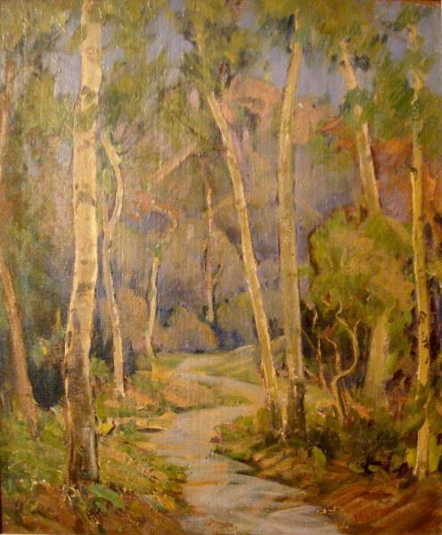 The Tangled Wildwood