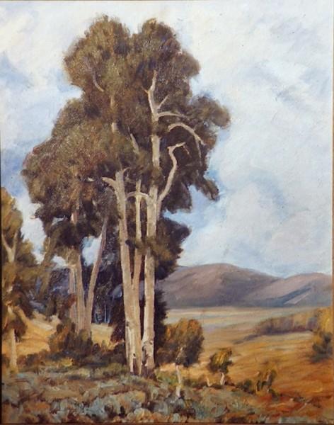 Aspens at Flat Canyon