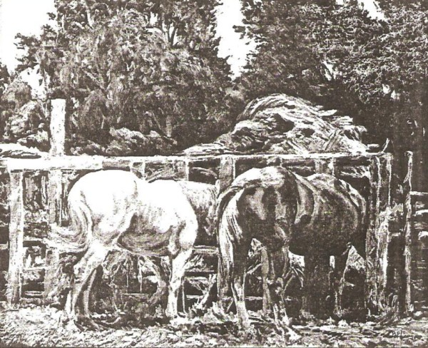 Rural Manger