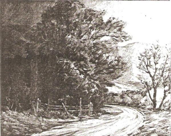 Field Road Near Pleasant Grove