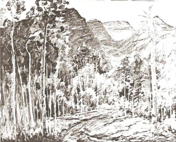 A View of Timpanogos