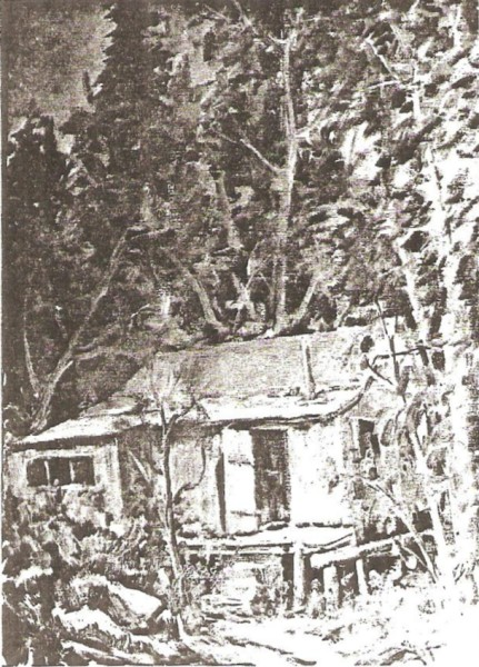 The Nelson Cabin