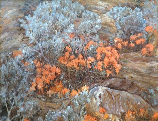 Indian Paint Brush and Sage