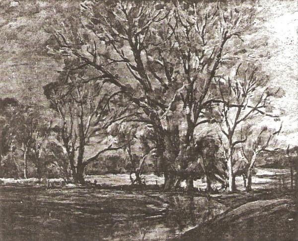 Trees Near Elsinore