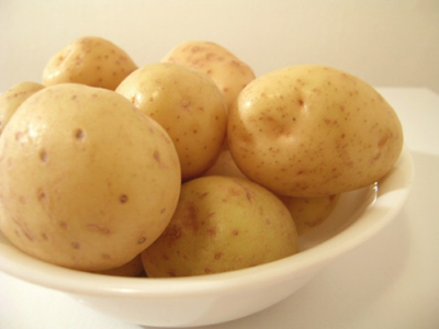 Сорт картофеля белый