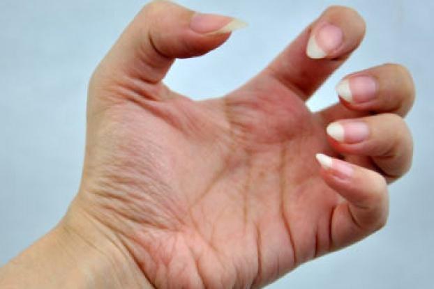 How quickly do fingernails grow
