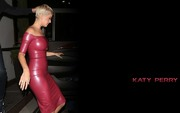 Katy Perry : Sexy Wallpapers x 23