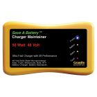 Battery Saver 48v 50 Watt (1.04A) Maintainer, Pulse Cleaner & Tester - 2365-48