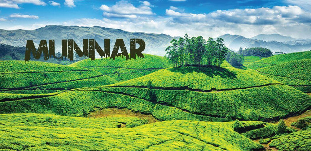 places to visit in Munnar in 1 day
